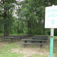 Picnic Ground 8