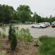 steinberg parking