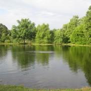 Fish Hatcheries in Forest Park