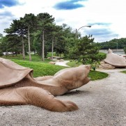 Turtle Playground in Forest Park