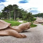 Turtle Playground in Forest Park
